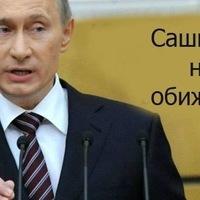 Анкета Александр Пестовников