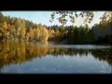 Краски осени 🍂 музыка Сергея Грищука