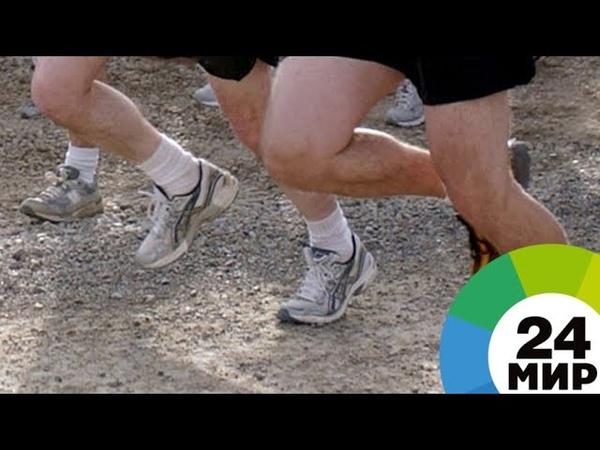 Московский марафон: бегуны съедят 9 тонн бананов и выпьют 16 тыс. литров пива - МИР 24