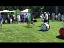 Странная вечеринка MARS 2018 робособака Spot mini Boston Dynamics робо бочка Gitta Piaggio и дрон