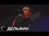 Дельфин в Костроме: О концерте, клубе Икра, мнениях зрителей и спецэффектах