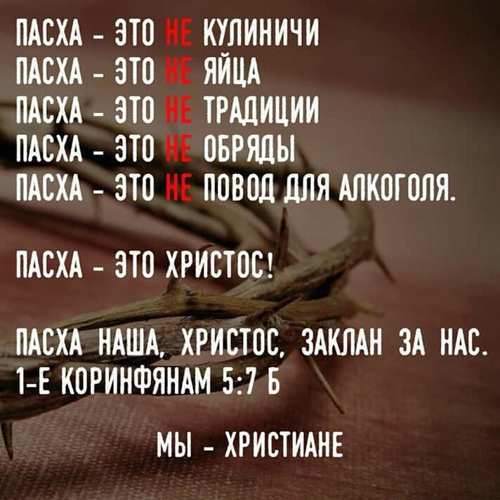 MmA6h4d7IrU.jpg