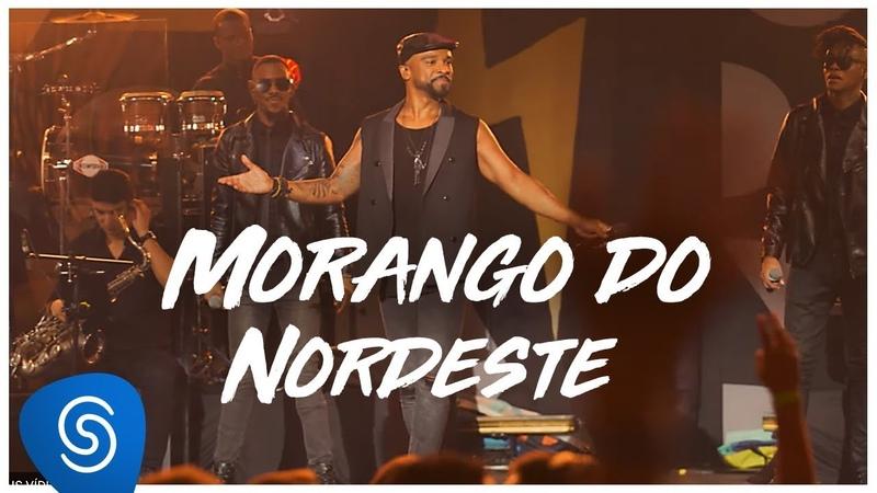 Alexandre Pires - Morango do Nordeste (DVD O Baile do Nêgo Véio - Ao Vivo) [Clipe Oficial]