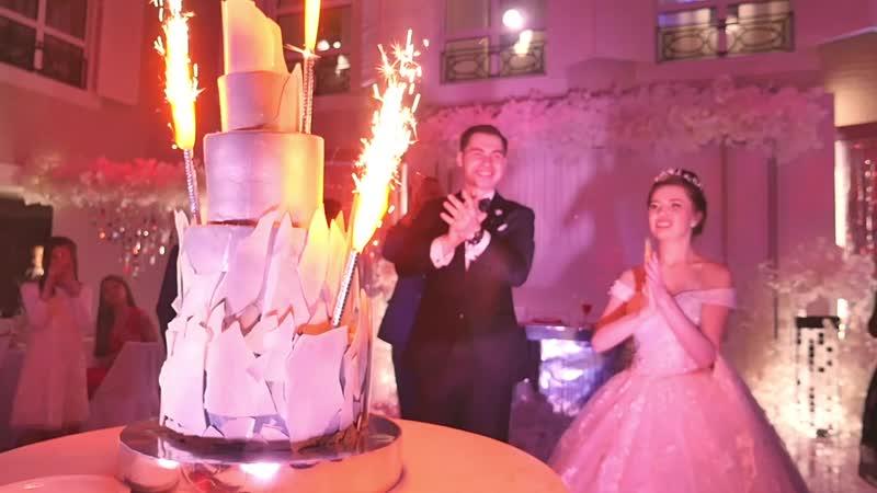 Свадебное торжество и регистрация в банкетном зале Вятка