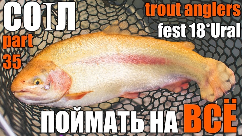 CO1Л. Part 35. Поймать рыбу на ВСЁ! Trout Anglers Fest 18*Ural