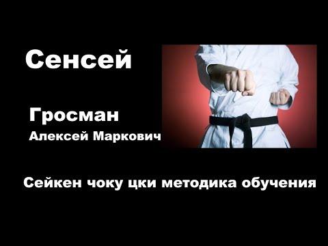 Самоподготовка 2 Гросман Алексей Маркович Сейкен чоку цки методика обучения