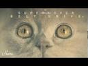Superlover Blow Up Original Mix Suara