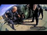 Intense Moment Brooklyn Police Arrest Man After High Speed Chase