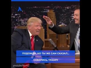 Такой непостоянный Трамп | АКУЛА