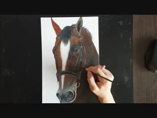 3- 3 Как нарисовать Лошадь маслом . Часть 3 из 3salli zh