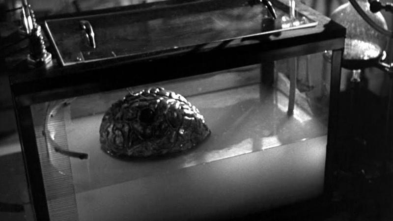 Shpongle - Brain in a Fishtank [Visualization]