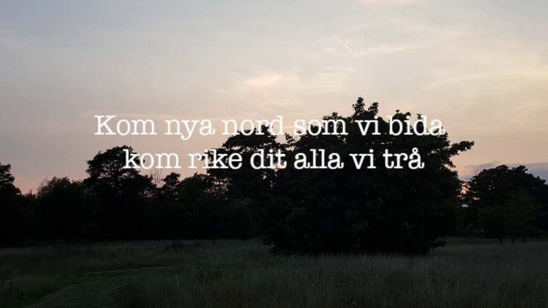 Blå Brigader - Ny Nord (2018)