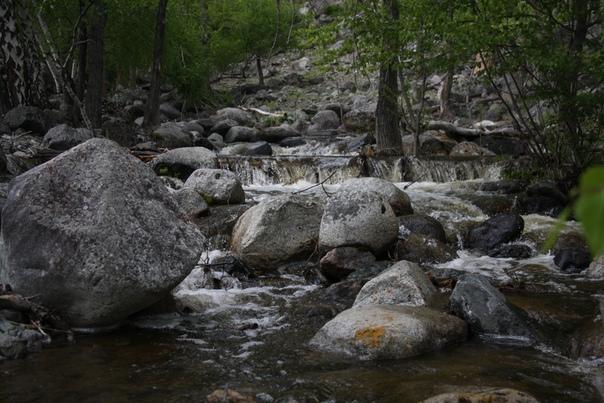 Пока нас догоняет группа, я успел сфотографировать горную реку. Из неё, насколько я понял, берут воду для нашей турбазы. Тут довольно бурная вода, я сел на камень возле берёзы посреди реки и пофотографировал поток.