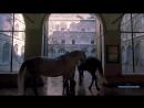 Белые королевские лошади (док)