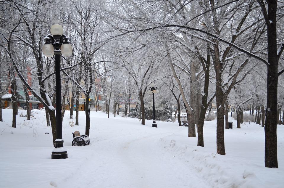 На северо-востоке Москвы обновятся около 30 общественных пространств в рамках программы «Мой район»