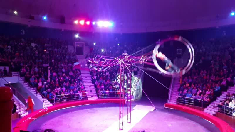 Итальянский цирк Слоны и тигры. Колесо.