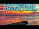 INMIGRANTES SACRIFICIOS BOOK BY ARACELY SALAZAR