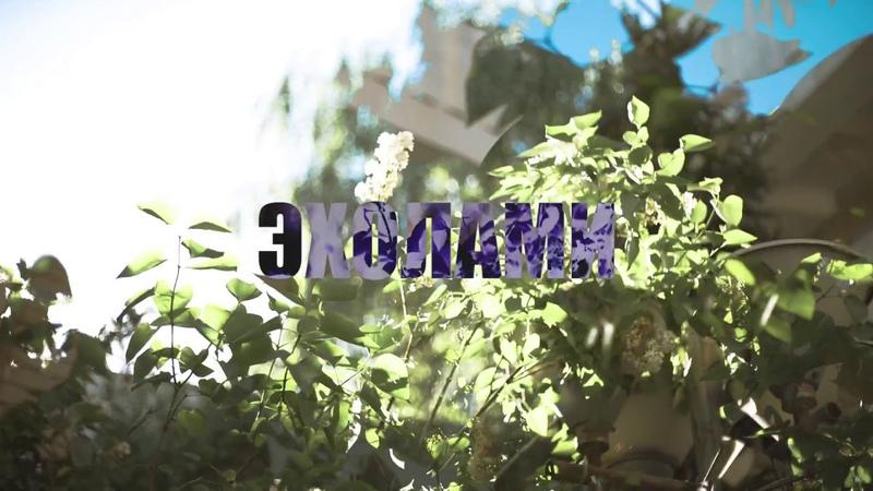 Эхолами - Потанцуй | qazaq indie | ün | Bishkek