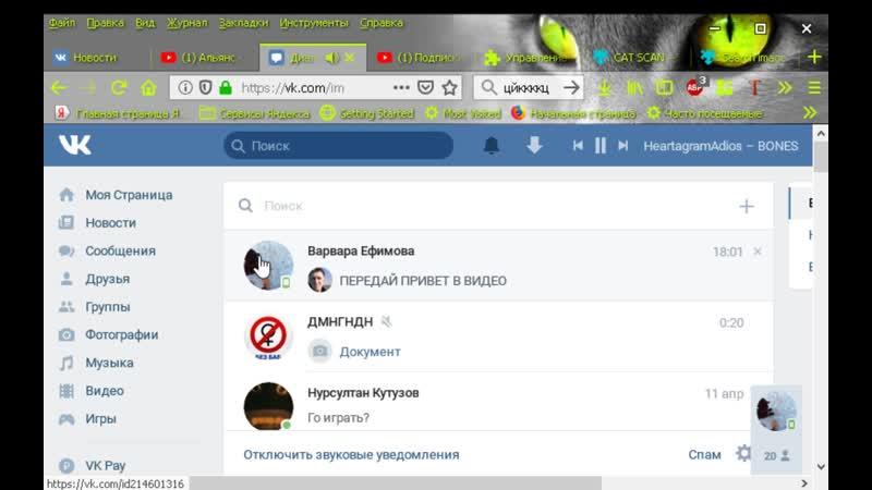Покзываю Firefox Раздракониваю Варю тем что у неё нет интернета flv
