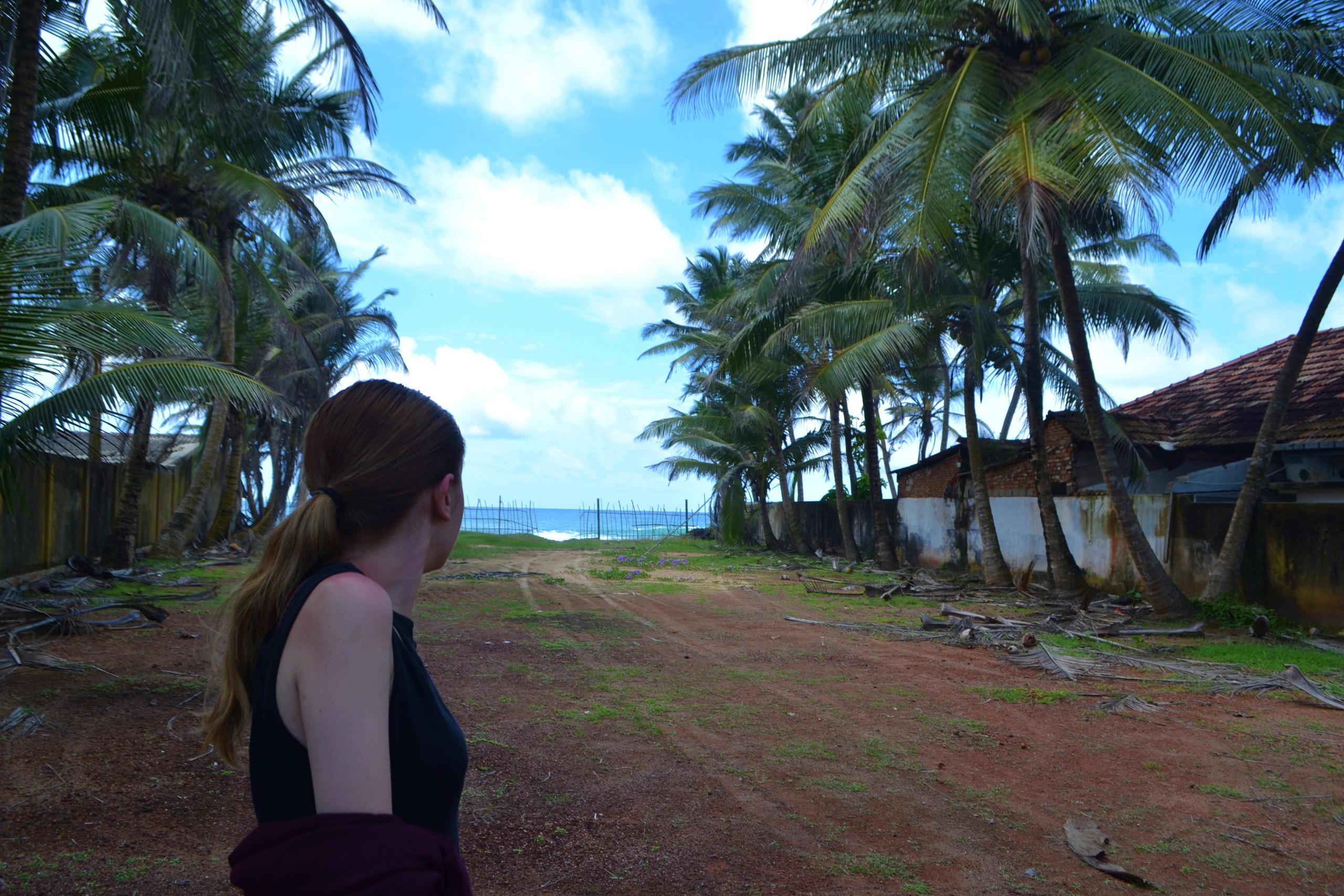 Шри Ланка (фото) HLm43BPk20s