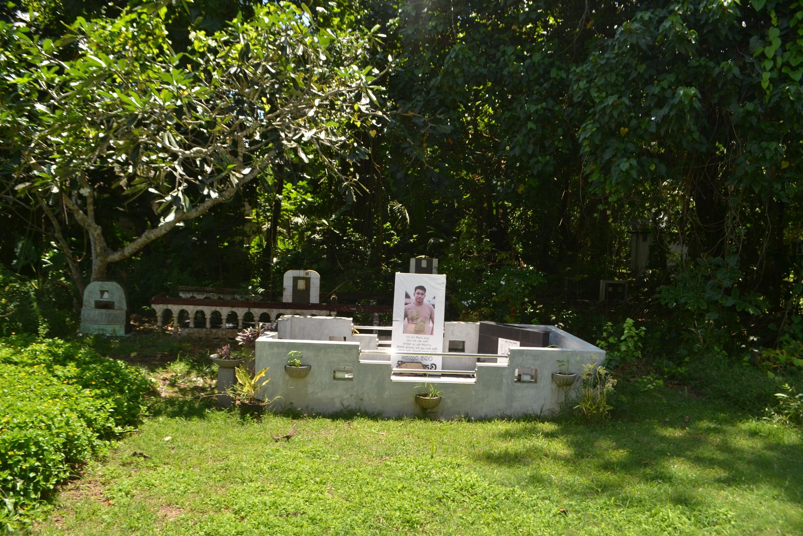 Шри Ланка (фото) - Страница 2 O4iHRkUcwyY