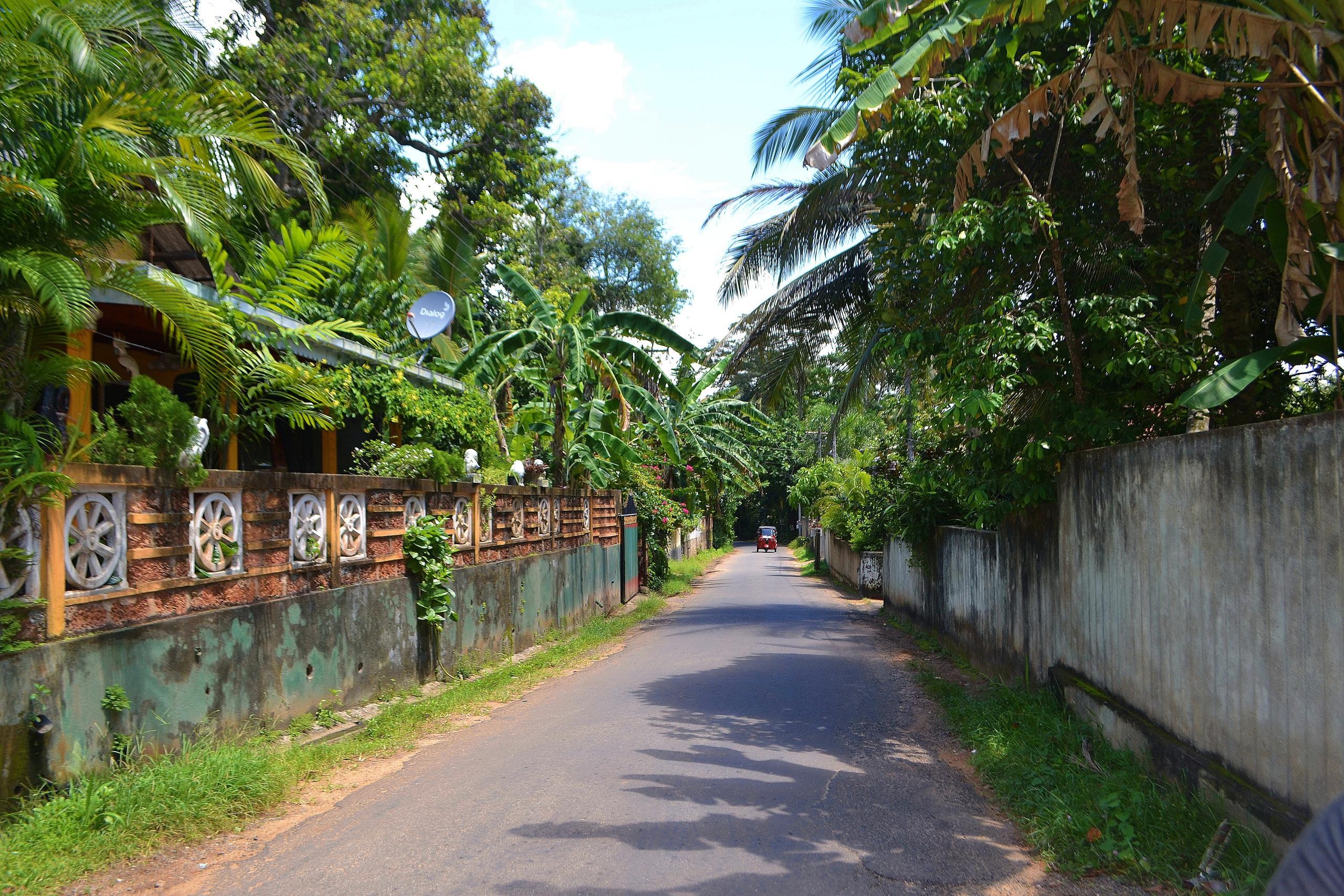 Шри Ланка (фото) - Страница 2 VBDqRZakTTw