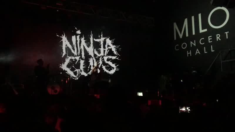 Ninja Guys