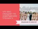 Свадебный Организатор Вводный урок