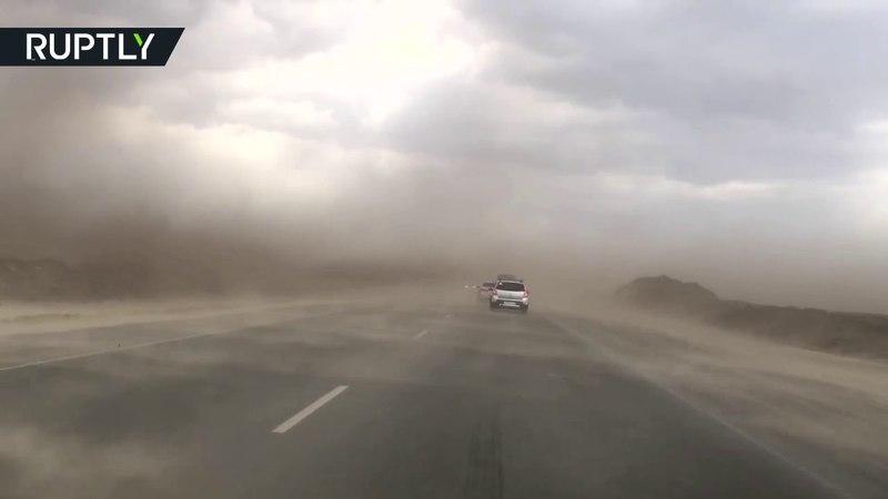 Песчаная буря превратила окрестности Тюмени в декорации к фильму ужасов