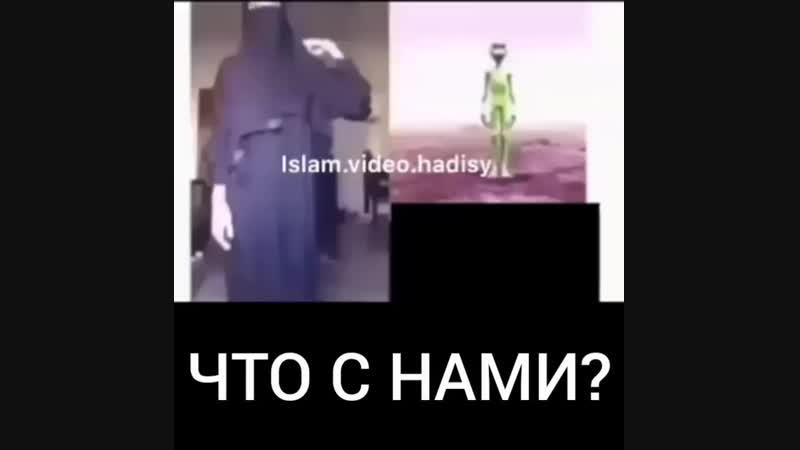 █☪ⒾⓈⓁⒶⓂ☪ █ в Instagram- «❁👉🏻@islam.video.hadisy ———————— ❆❀❆ ———————— ▂ ▃ ▅ ▆.mp4