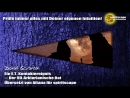 Ein E.T. Kontaktereignis - Der 9D-Arkturianische Rat