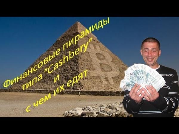 Финансовые пирамиды типа Cashbery и с чем их едят