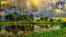 Легкий дождь без грозы и грома 6 часов дождя для глубокого сна