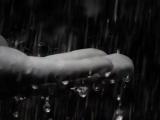 Дождь на Неве Лидия Клемент