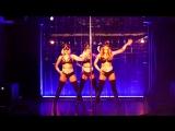эротическое шоу кошек стриптиз клуб Медведь в Смоленске