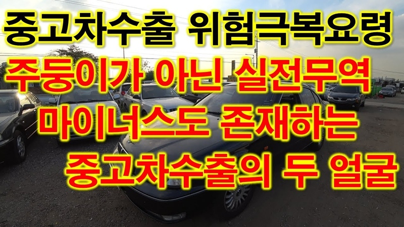 [중고차수출] 1인창업 어디서든 존재하는 양날의 검인 마이너스상황 대처법 ( EX