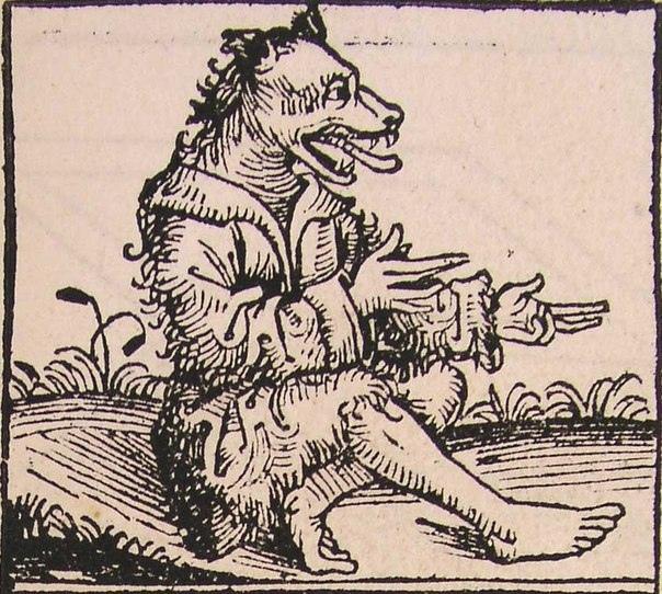 Раса собакоголовых. Во многих легендах упоминаются люди со странным, необычным строением тел и лиц. Можно предположить, что люди обожествляли животных и наделяли их своими качествами, но