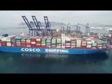 COSCO SHIPPING TAURUS COSCO SHIPPING Lines (Greece) SA