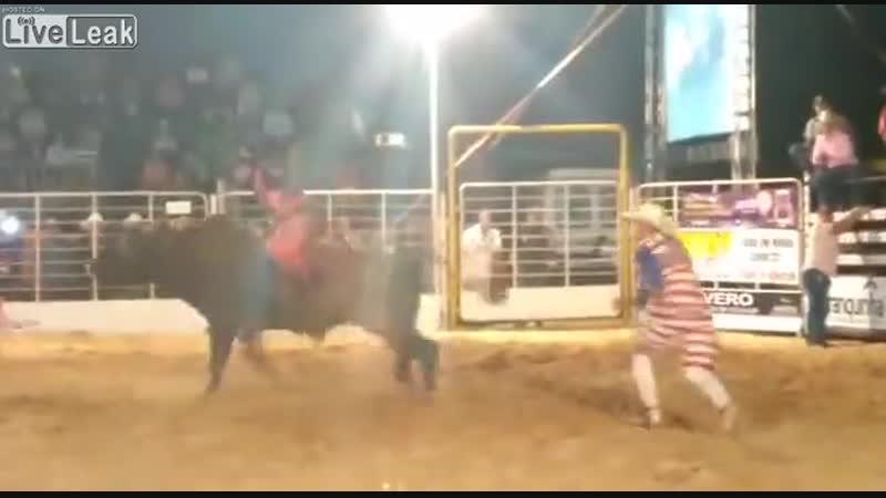 видео о том как бык мужика через забор перекинул))