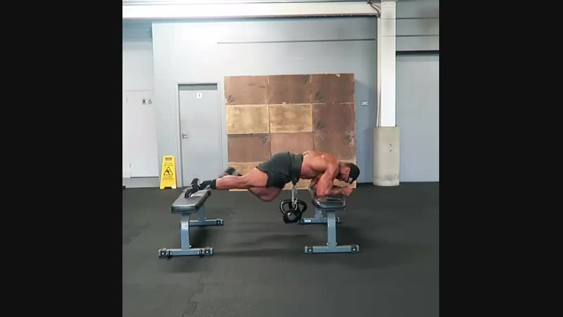 1KB Elevated Plank ( core and lower back)