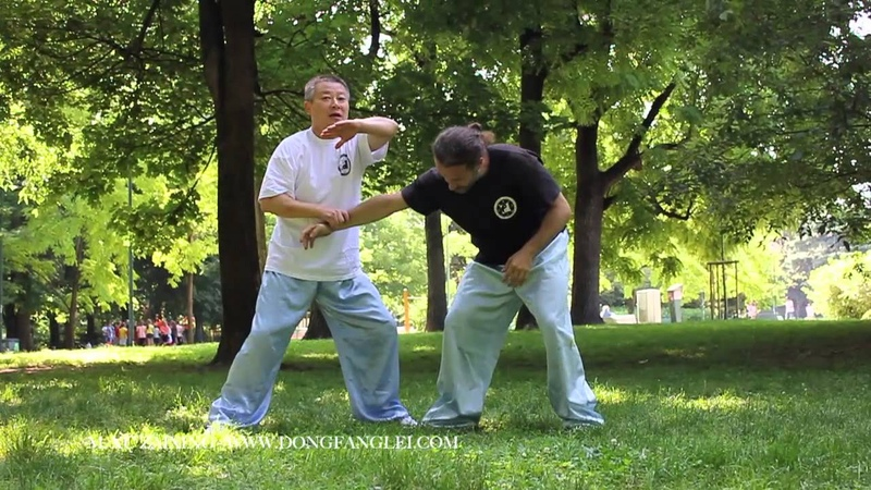 Kung fu fighting techniques ( baguazhang ) M. Xu Zaixing