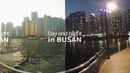 [360도 VR영상] Day and Night in Busan (부산 야경/주경) / 360 degree video