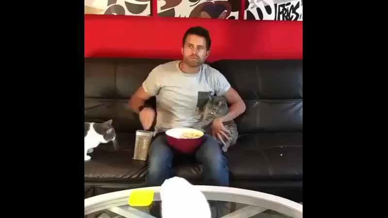 Всех накормил.