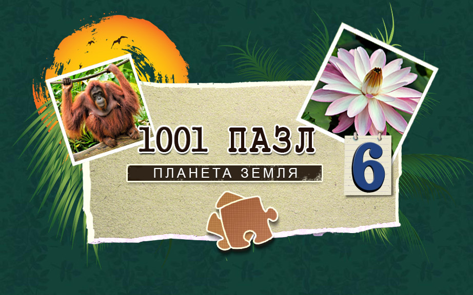1001 Пазл: Планета Земля 6 | 1001 Jigsaw: Earth Chronicles 6 (Rus)