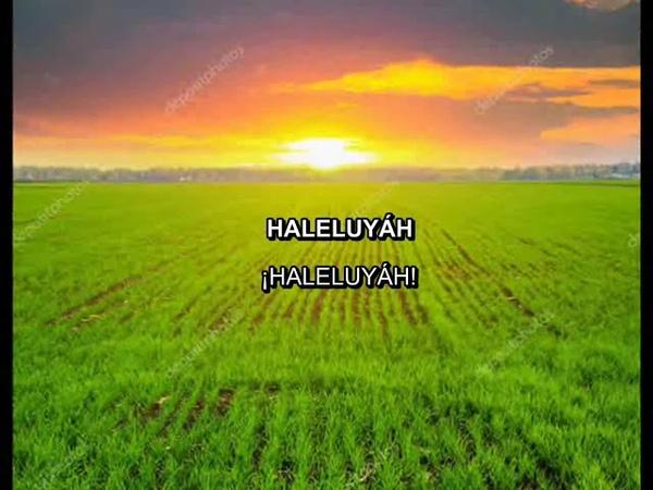 YOSEF KARDUNER CHAIM LUK - HALELUYAH - TEHILIM 150 - subtítulos fonética español