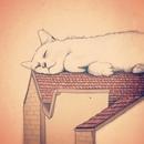 Кота заводят, чтобы кот