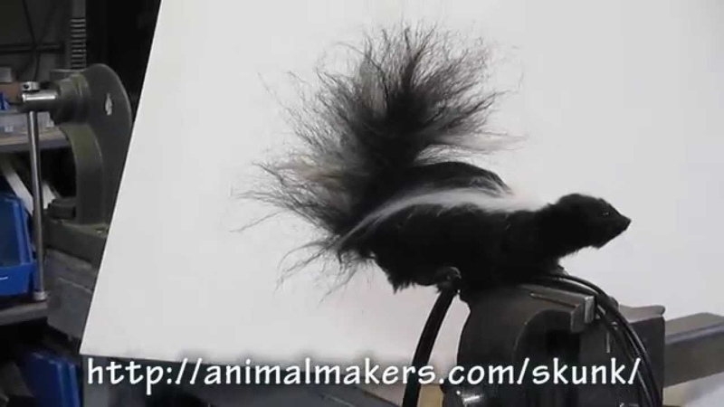 Realistic movie prop skunk puppet by Animal Makers