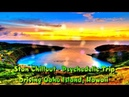 Stan Chillout Psychedelic Trip Driving Oahu Island Hawaii