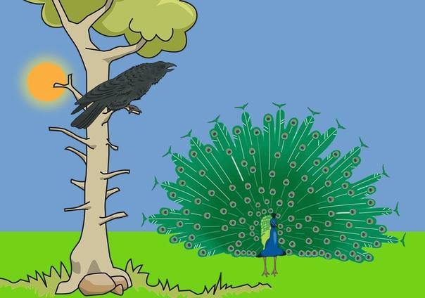 павлин и ворона залетела как-то раз ворона в сад богатого визиря. отведала фиников, попила воды из фонтана и прилегла отдохнуть в тени фикусов. вдруг, смотрит, шествует по дорожке из мрамора