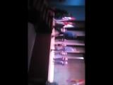 Rostik Karelin - Live